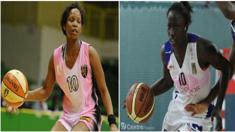 Lionnes du Basket : 2 nouvelles recrues