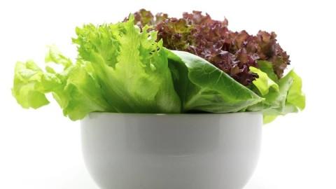 """Astuce – Gardez votre salade """" fraîche"""" plus d'une semaine !"""